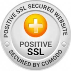 Positive Wildcard SSL Certificates